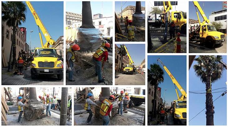 """GMVykon contribuyó al programa """"Rescatando al Centro de Monterrey"""""""